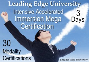 Intensive Accelerated Immersion Mega Certification Leading Edge University